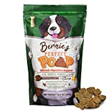 Bernie's Perfect Poop Digestion & General Health Supplement for Dogs: Fiber, Prebiotics, Probiotics & Enzymes Relieves Digestive Conditions, Optimizes Stool, and Improves Overall Health & Wellness Larger Image