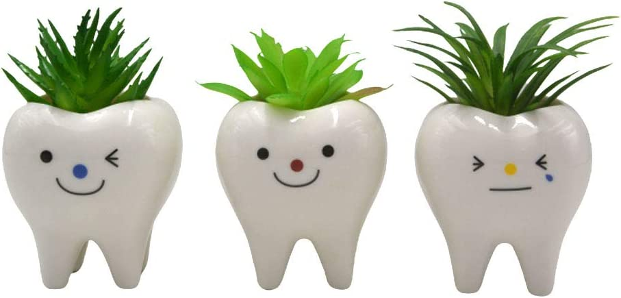 MONMOB Pack of 3 Mini Shaped Planter Ceramic Succulent Plant Pots Set Small for Small Succulent (Teeth)