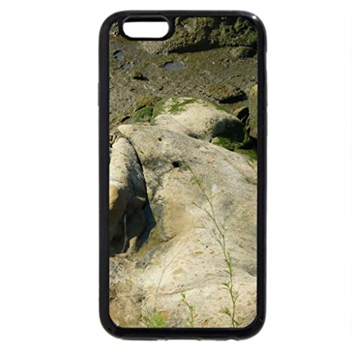 iPhone 6S / iPhone 6 Case (Black) moss covered wall