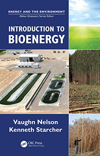 Introduction to Bioenergy (Energy and the Environment) (The Conversion Of Solar Energy To Chemical Energy)