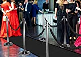 6 Silver 23LBS Posts + 4 Black Ropes + 1 Black VIP Runner + 1 Sign Holder - Rope Stanchion Entrance Crowd Control Barrier Set