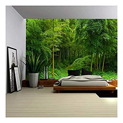 Hidden Path in a Bamboo Forest Wall Mural, Top Quality Design, Grand Handicraft
