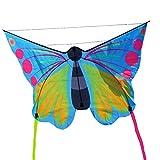 Besra Huge Rainbow Parrot/Eagle / Butterfly Kite 3m/118inch Long Tails 3D Bird Kite Handle & Strings Outdoor Fun Sports Beach & Park