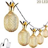 Omika Gold Metal Mesh Pineapple Lantern String Lights, 10.85ft 20 LED USB Plug & Battery Powered Novelty Fairy Lights for Bedroom Wedding Birthday Party Decorations(Warm White)