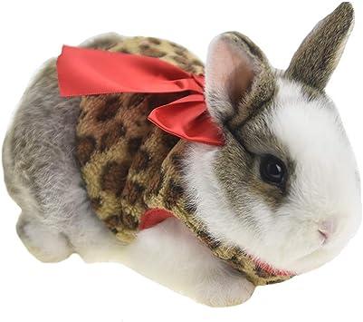 wei/ß VIGE Klassische Hochzeit Schleier Kopfschmuck Kost/üm Boutique Haustiere Brautschleier Pet Grooming Fashion Pet Haarschmuck