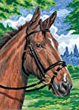 7 inch numbers - Royal & Langnickel Mini Colour Pencil By Number Kit: 5x7 Horse