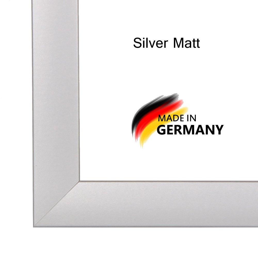 Amazon.de: Bilderrahmen PN35 60x180 cm in SILBER MATT normal ...