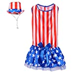 Rubies Costume 4th of July Collection Pet Costume, Patriotic Pooch Girl 2