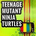Teenage Mutant Ninja Turtles (Cartoon Theme)