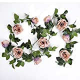 Luyue Vintage 10 Head Artificial Silk Rose Flower Ivy Vine Leaf Hanging Garland Home Wedding Decor,Pack of 2 (Coffee)