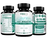 Premium 100% All Natural Soothing Stress Relief Support Supplement – JUST Breathe – Extra Strength Serotonin Support: Ashwagandha, Chamomile, Valerian Root, More! – 60 Veggie Caps