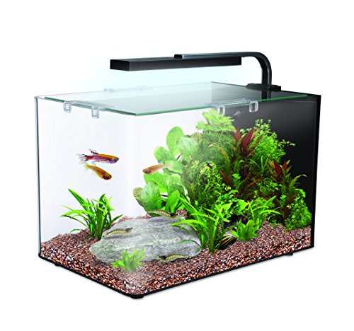 Interpet Nano LED Complete Aquarium Fish Tank Kit, 19 L