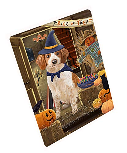 (Doggie of the Day Enter at Own Risk Trick or Treat Halloween Brittany Spaniel Dog Blanket BLNKT94737 (60x80 Fleece) )