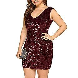Plus Size V Neck Sleeveless Wine Red Cocktail Dress