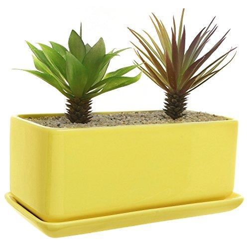 10 inch pot planter - 6