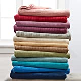 BrylaneHome Studio Primrose Cotton Blanket (Sage,Twin)
