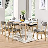 Aingoo Modern Glass Dining Table Rectangular Dining Room Kitchen Table Metal Legs 48IN 4/6 Person