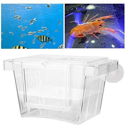 Aquarium Cichlids Fish Egg Incubator Tumbler Fish Hatchery Breeding for Fish Tank WEAVERBIRD Fish Hatchery Incubator