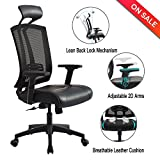 High Back Mesh Office Chair -  Adjustable Tilt Angle and 2D Arms Computer Desk Executive Chair with Lumbar Support and Leather Headrest
