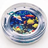 Canplow Sea Life Liquid filled Acrylic Paperweight, Submarine Fishes