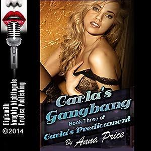 Carla's Gangbang: A Rough Group Sex Erotica Story Audiobook