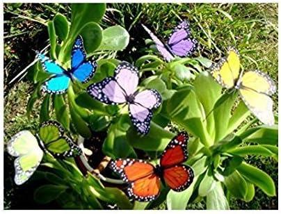 Uteruik - Varillas de Mariposas para jardín (8 cm, 10 Unidades): Amazon.es: Hogar