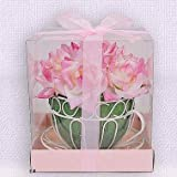 Pink Paper Rose Bouquet in Teacup in PVC Box with Ribbon