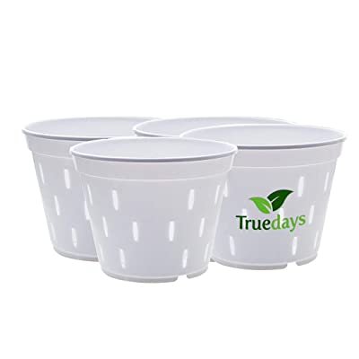 TRUEDAYS 5.5 inch 4 Pack Slotted White Plastic Pot Planter for Orchid: Garden & Outdoor