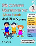 Big Chinese Workbook for Little Hands Level 1 Ages 6+ (Volume 2)