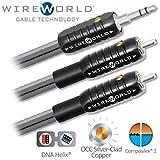 WIREWORLD Nano-Silver Eclipse Mini Jack to 2 RCA Audio Cable - 1.0M