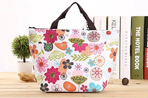 Nabati waterproof picnic lunch bag Tote Insulated Cooler Travel organizer