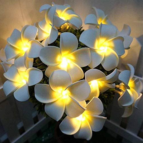 Fantasee Plumeria String Lights, Foam Artificial Plumeria Flower Led String Lights Battery Operated Fairy Lights for Bedroom Home Wedding Hawaiian Luau Party Decor (9.8ft 20LED, Warm -