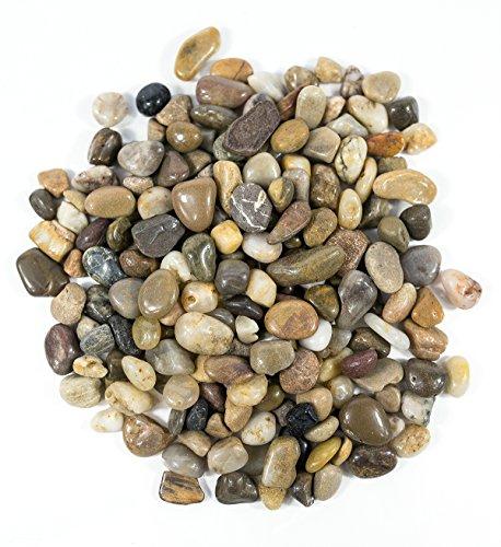 gravelgovine-polished-gravel-decorative-gravel-mixed-5-pounds
