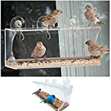 Cheap Clear Window Bird Feeder, Sturdy Suction Cup Design for Best Wild Bird Watching, Squirrel Proof and Easy to Clean, See Through Acrylic Holds Up in All Weather, E-Book Identification Guide Included.