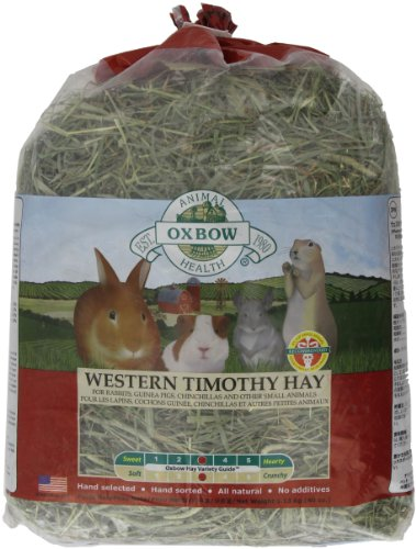 Oxbow Western Timothy Hay, 40-Ounce Bag, My Pet Supplies
