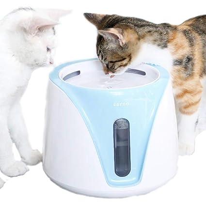 DINGG Fuente de consumición automática para los Gatos y los Perros, Agua filtrada de carbón