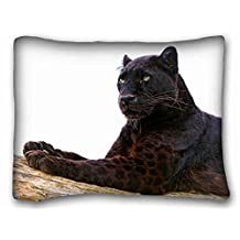 Custom Cotton & Polyester Soft ( Animals panther paws lie down predator big cat ) Popular 20x26 inch One Side Pizza Rectangle Pillowcase suitable for California King-bed PC-Bluish-49046
