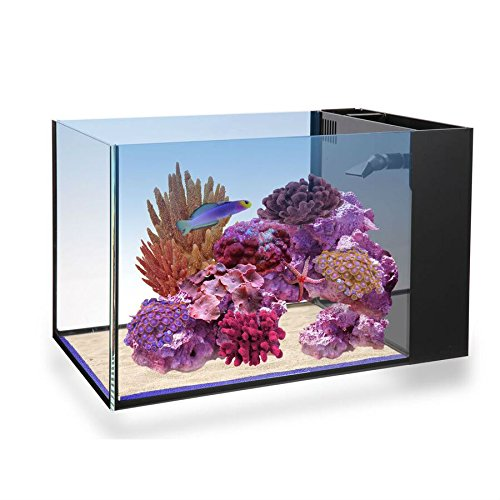 Innovative Marine Fusion Peninsula Glass NUVO Aquarium