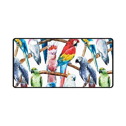 Jesspad Car License Plate Holders, Watercolor Bright Parrot Tropical Bird Cockatoos,Auto Metal Car Bumper Accessories Tag Cover