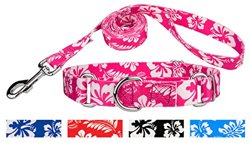 Country Brook Design Pink Hawaiian Martingale Dog Collar & Leash - (Hawaiian Dog Collar Collars)