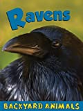 Ravens, Christine Webster, 1605960829