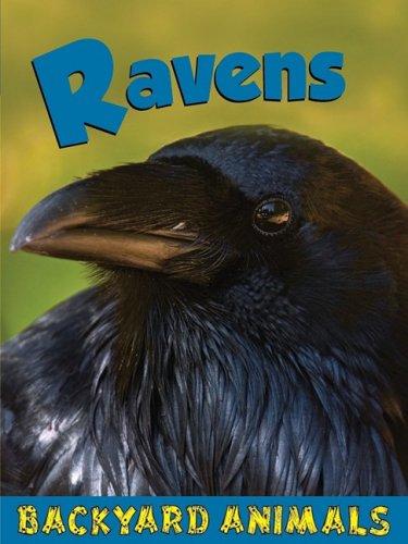 Download Ravens (Backyard Animals) PDF