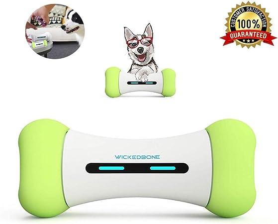 jouet chien flottant resistant