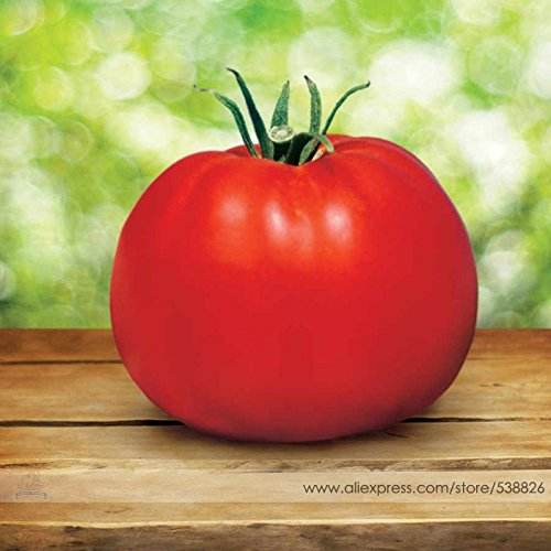 2018 Hot Sale!! Park's Whopper CR Improved Tomato Seeds, Professional Pack, 100 Seeds/Pack, Big Juicy Crack-Resistant Tomatoes #NF730 (Seed Pack Tomato)