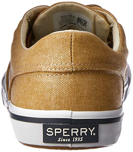 Cvo Chinese Top Tennis Homme Ii Sperry sider Striper Washed P4npIz