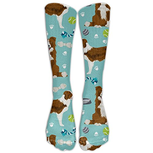 PHCDGDD Border Collie Red Dog Graduated Compression Socks For Men & Women Best Stockings For Nurses, Travel, Running, Maternity Pregnancy