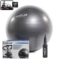 Exercise Fitness Yoga Core Stability Balance Ball 65cm Anti Burst With Profes...