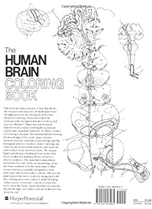 The Human Brain Coloring Book (Coloring Concepts Series)