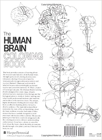 new The Human Brain Coloring Book (Coloring Concepts Series ...