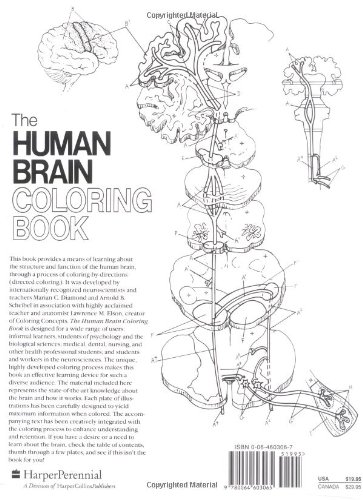 neuroscience coloring book | Coloring Pages